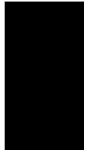 PocketJam2-icon-heart-brain-300x500