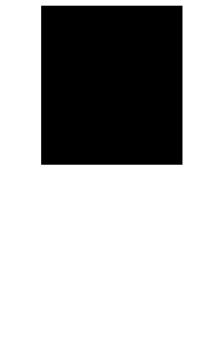 PocketJam2-icon-mouse-300x500