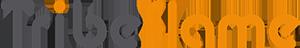 logo-TribeFlame-300x