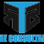 logo-GameConsultant-300x