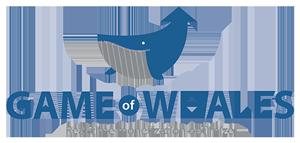 logo-GameOfWales-300x