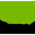 logo-Nvidia-stack-300x